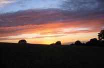tara-at-dusk-95486_207x136